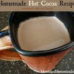 Hot Cocoa Recipe with Honey
