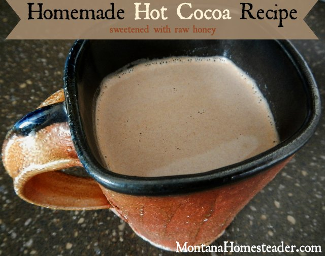 Homemade hot cocoa recipe sweetened with raw honey | Montana Homesteader