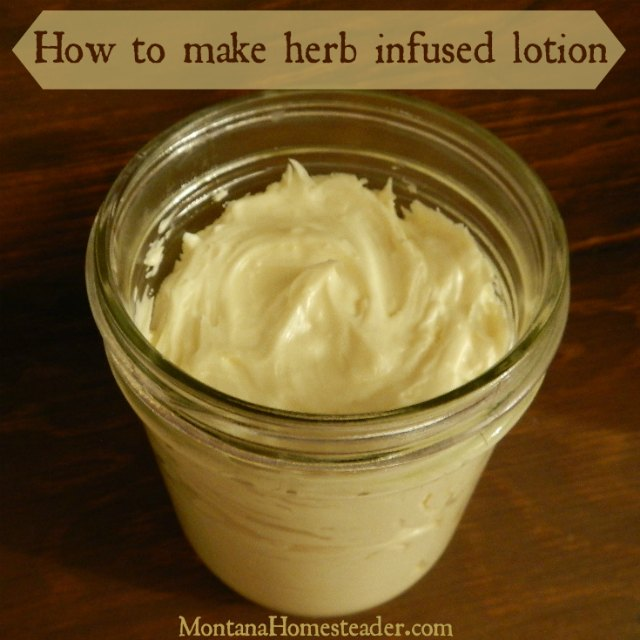 How to make lotion with herb infused oil | Montana Homesteader
