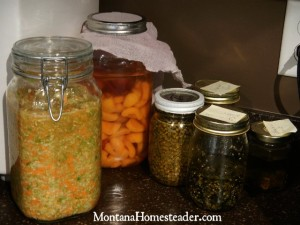 Making homemade herb infused oil and fermented foods | Montana Homesteader