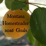 Montana Homesteader 2016 Goals