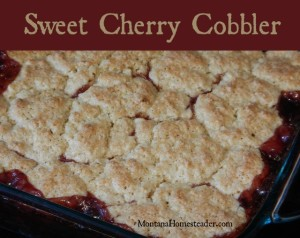 Sweet cherry cobbler recipe using local cherries | Montana Homesteader