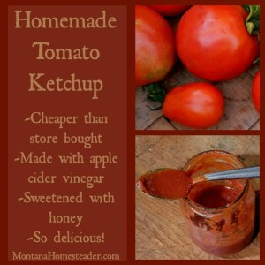 Homemade ketchup made with homegrown tomatoes sweetened with honey and apple cider vinegar | Montana Homesteader