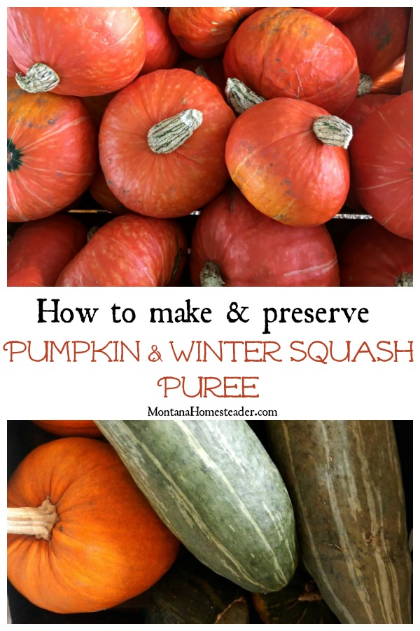 How to make and preserve pumpkin and winter squash puree with picture showing a variety of winter squash
