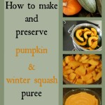 How to make pumpkin puree & preserve it