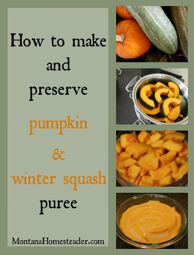 How to make and preserve pumpkin and winter squash puree | Montana Homesteader