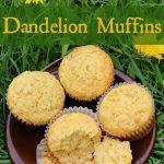 Dandelion Muffins Recipe