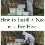 How to Install a Nuc in a Hive
