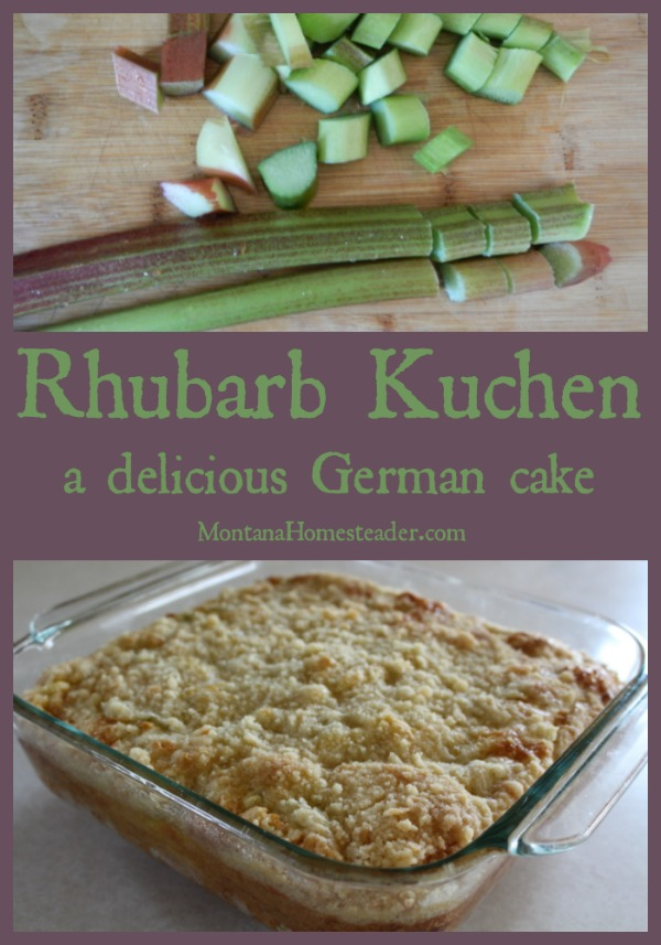 Rhbuarb Kuchen a delicious German cake recipe Montana Homesteader