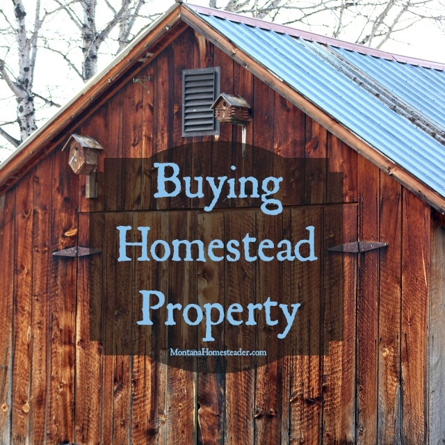 tips for buying homestead property montana homesteader