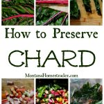 How to Preserve Chard