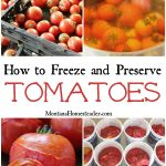 How to Preserve and Freeze Tomatoes