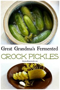 Fermenting pickles in a crock and sliced fermented pickle to explain how to make fermented pickles