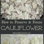 How to preserve and freeze cauliflower
