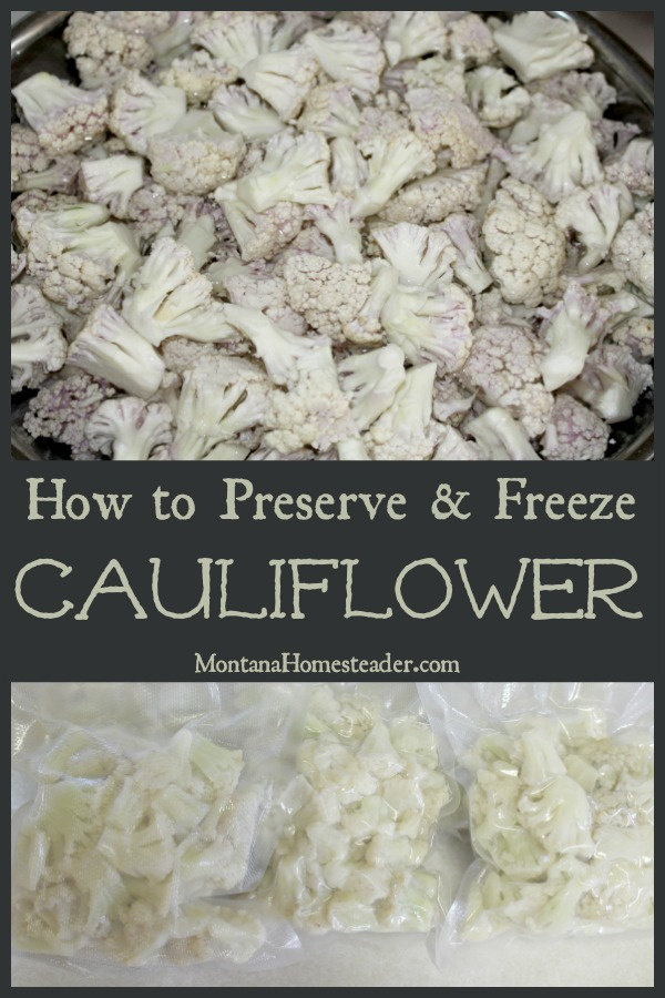 How to preserve and freeze cauliflower with a picture of a bowl of chopped cauliflower and a picture of vacuum sealed packs of cauliflower to preserve and freeze
