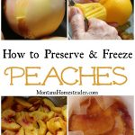 How to preserve and freeze peaches