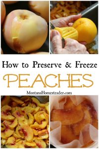 How to preserve and freeze peaches picture showing skin pealing on fresh peach, bowl of chopped peaches and container of peaches in light syrup topped with waxed paper to help prevent browning when freezing
