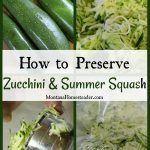 How to Preserve Zucchini and Summer Squash