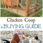 Chicken Coop Buying Guide
