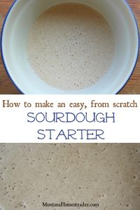making sourdough starter from scratch with wild yeast