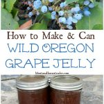 How to make and can Oregon Grape jelly