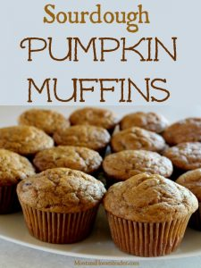 Plate of delicious homemade sourdough pumpkin muffins