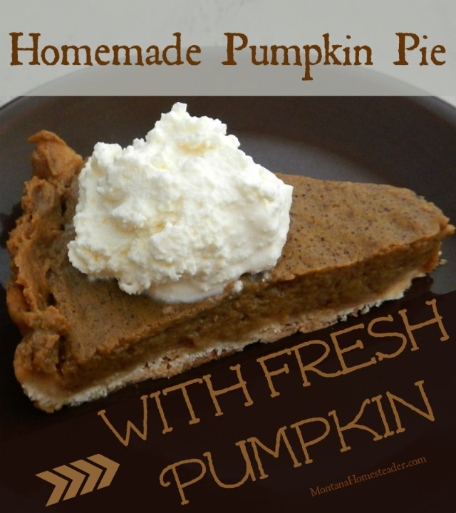 Homemade pumpkin pie made with fresh pumpkin