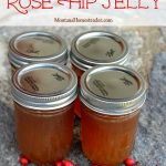 How to make and can Rose Hip Jelly