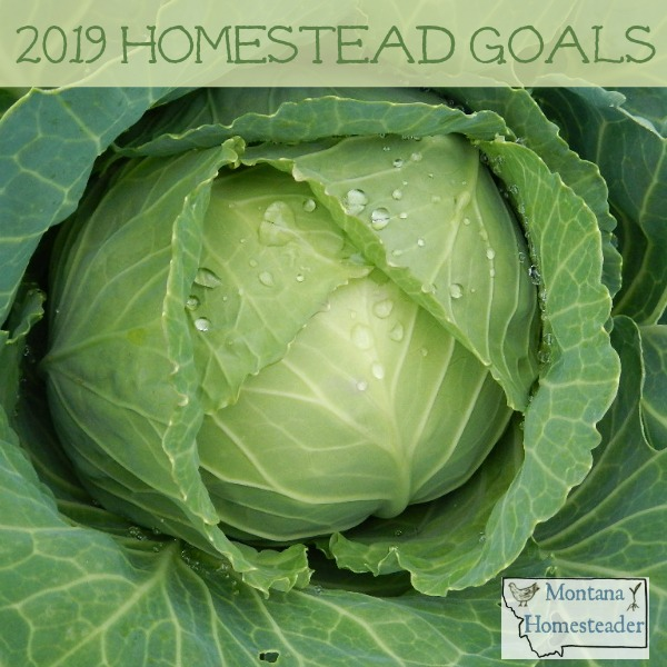Setting goals for the homestead in 2019
