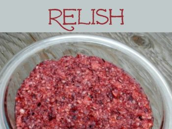 Honey sweetened raw cranberry orange relish salad