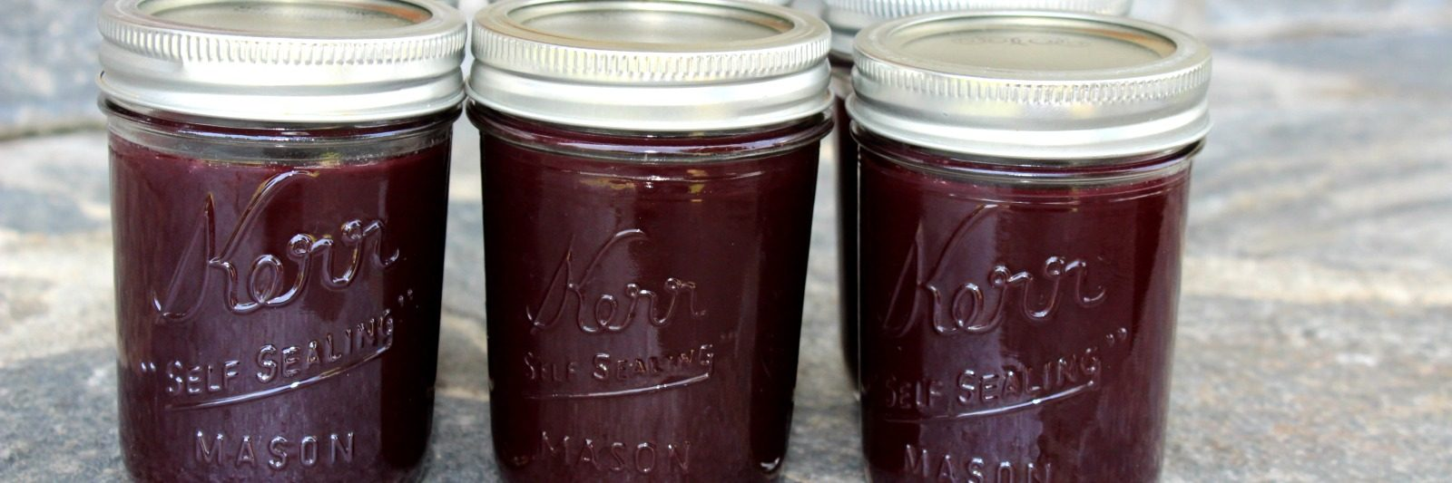 How to can preserve dehydrate and ferment food